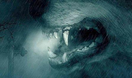 Kya Wah Werewolf Tha