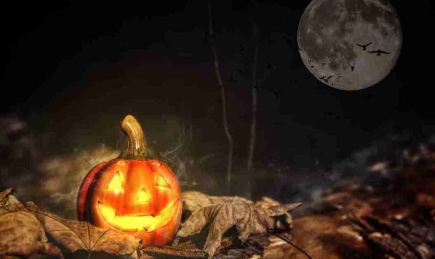 3 Short Real Halloween Stories- Horror Story Hindi